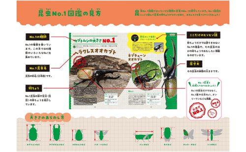 『昆虫No.1図鑑』本文サンプル1