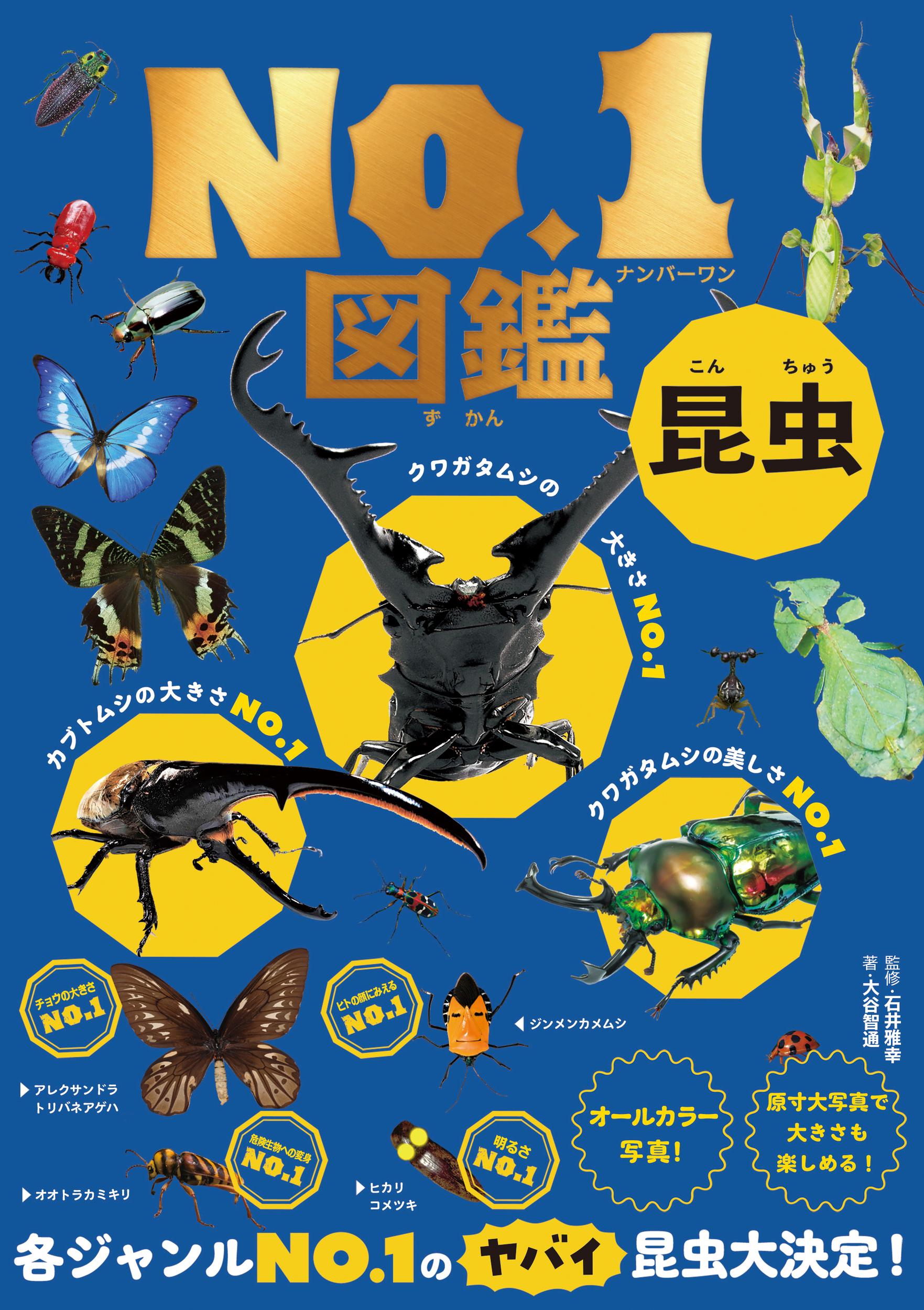 昆虫No.1図鑑